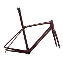 Vélo de route Kit Cadre TCR Advanced SL - 2022